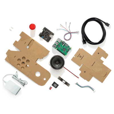 Google Voice Kit Starter Set