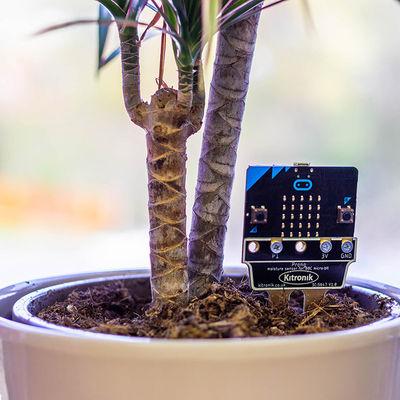 micro:Toprak ve Nem Sensörü