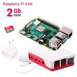 Raspberry Pi - Raspberry Pi 4 - 2 GB Starter Kit