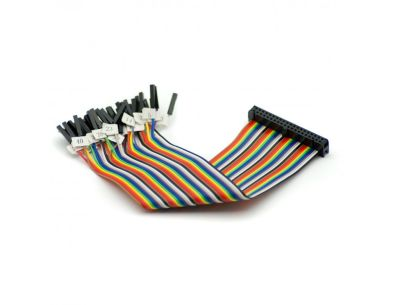 Raspberry Pi Etiketli GPIO Kablosu Dişi