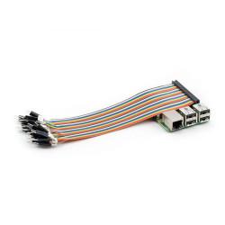 Raspberry Pi Etiketli GPIO Kablosu Erkek - Thumbnail
